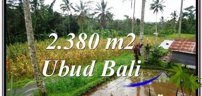 FOR SALE Beautiful 2,380 m2 LAND IN UBUD BALI TJUB567