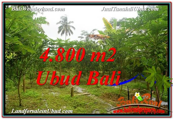Exotic PROPERTY 4,800 m2 LAND IN Ubud Payangan FOR SALE TJUB571