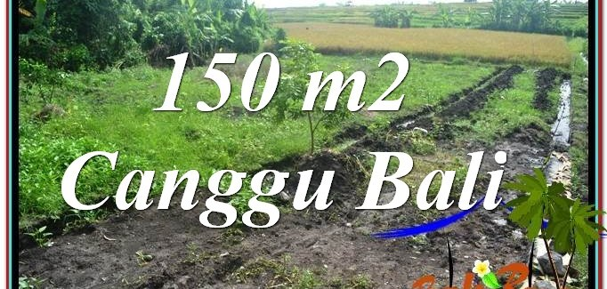 Affordable PROPERTY CANGGU BALI LAND FOR SALE TJCG213