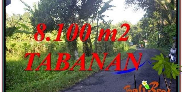 Exotic 8,100 m2 LAND IN Tabanan Marga FOR SALE TJTB329