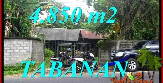 Magnificent PROPERTY TABANAN BALI LAND FOR SALE TJTB330