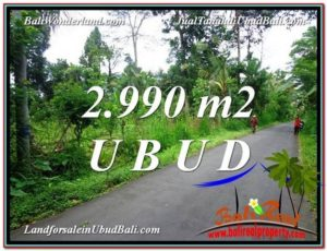 2,990 m2 LAND IN UBUD BALI FOR SALE TJUB591