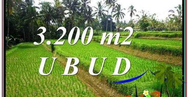 Magnificent PROPERTY LAND IN UBUD FOR SALE TJUB594