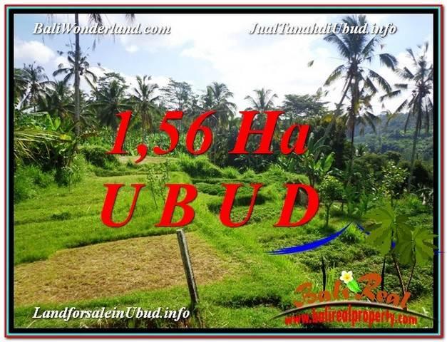 FOR SALE Exotic LAND IN Ubud Payangan BALI TJUB601