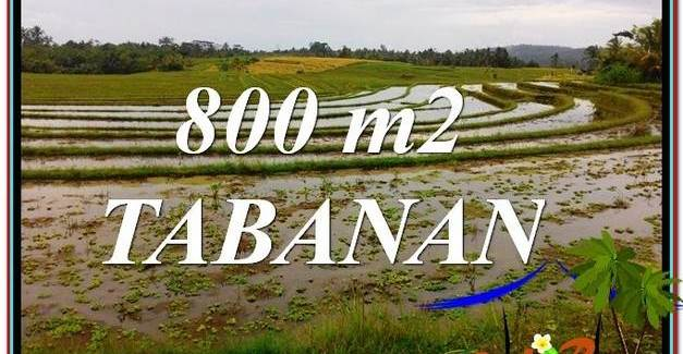 Tabanan Selemadeg LAND FOR SALE TJTB324
