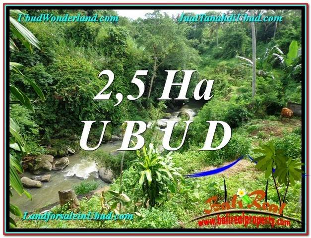 Magnificent PROPERTY Sentral Ubud 26,000 m2 LAND FOR SALE TJUB579