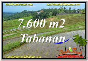 Exotic 7,600 m2 LAND SALE IN Tabanan Selemadeg BALI TJTB347