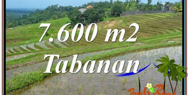 Beautiful PROPERTY LAND FOR SALE IN Tabanan Selemadeg BALI TJTB347