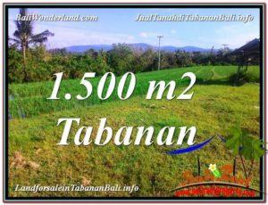 TABANAN BALI 1,500 m2 LAND FOR SALE TJTB353
