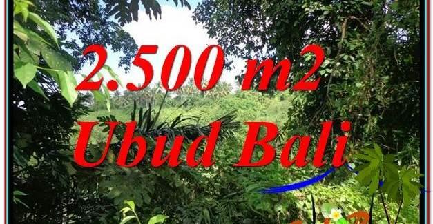 Beautiful LAND FOR SALE IN UBUD TJUB605