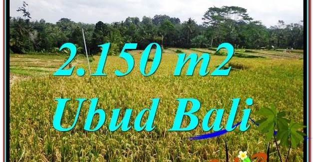 Beautiful LAND FOR SALE IN Ubud Tegalalang BALI TJUB606