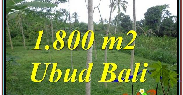 Affordable PROPERTY 1,800 m2 LAND IN UBUD BALI FOR SALE TJUB610