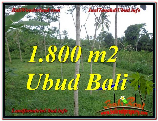 Affordable PROPERTY 1,800 m2 LAND IN UBUD BALI FOR SALE TJUB610