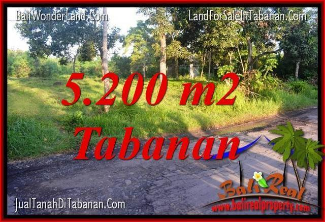 Magnificent 5,200 m2 LAND FOR SALE IN TABANAN TJTB334