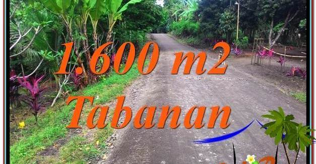 FOR SALE Magnificent PROPERTY LAND IN Tabanan Selemadeg TJTB337