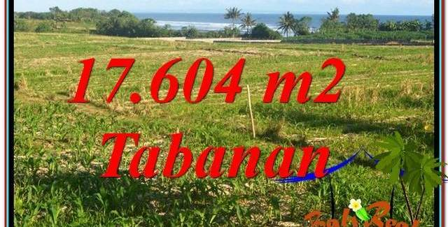 Beautiful PROPERTY LAND FOR SALE IN Tabanan Kerambitan BALI TJTB342