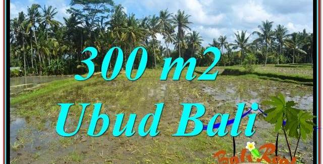 Exotic UBUD BALI 300 m2 LAND FOR SALE TJUB619