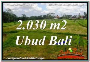 Magnificent PROPERTY Ubud Tegalalang 2,030 m2 LAND FOR SALE TJUB623