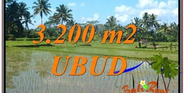 Beautiful PROPERTY UBUD LAND FOR SALE TJUB628