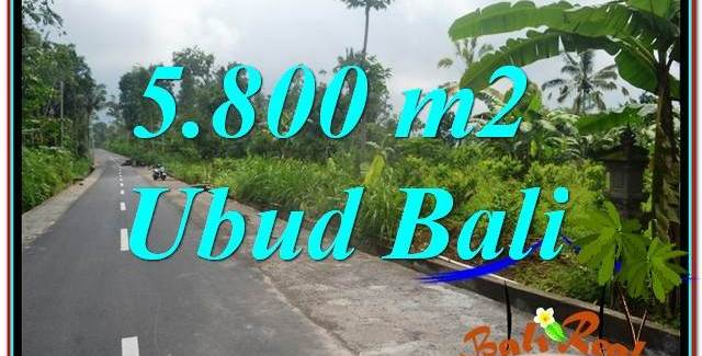 FOR SALE Exotic 5,800 m2 LAND IN Ubud Tegalalang BALI TJUB637