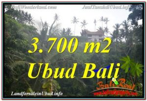 Magnificent PROPERTY LAND IN UBUD FOR SALE TJUB640