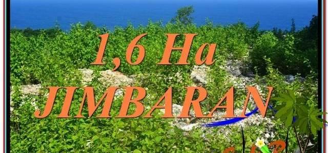 Affordable Jimbaran Uluwatu  16,000 m2 LAND FOR SALE TJJI112