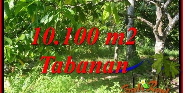 Magnificent LAND FOR SALE IN Tabanan Selemadeg Barat BALI TJTB360