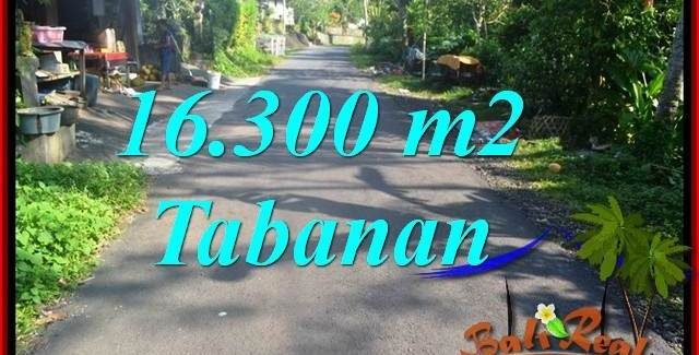 FOR SALE Exotic LAND IN Tabanan Selemadeg Barat BALI TJTB361