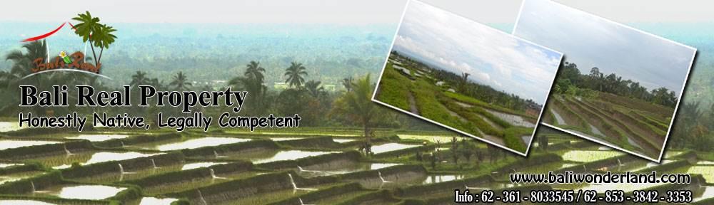 Land for sale in Jimbaran Canggu Tabanan Ubud by Bali Property