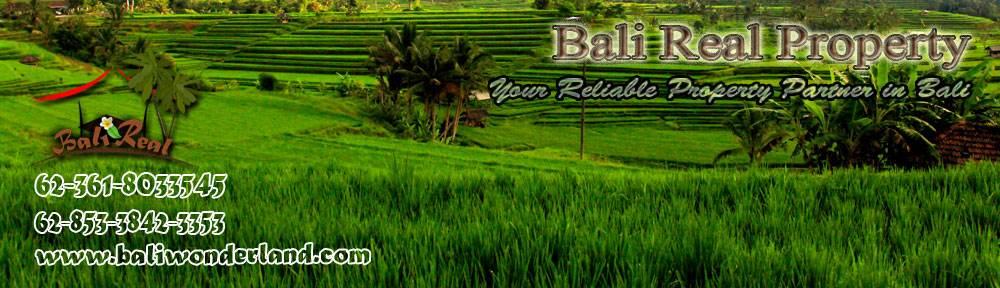 Land for sale in Jimbaran Canggu Ubud Tabanan by Bali Real Property