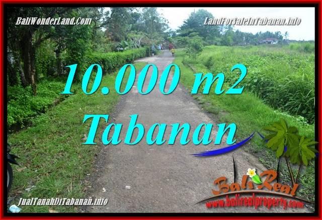 Beautiful PROPERTY 10,000 m2 LAND FOR SALE IN TABANAN BALI TJTB354