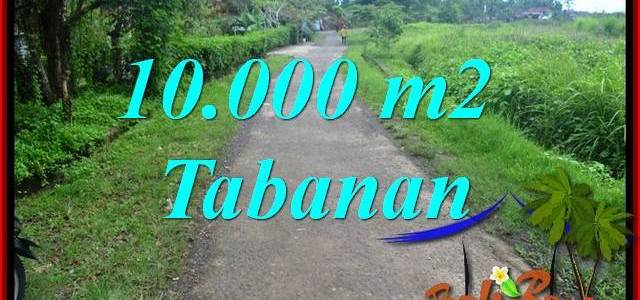 Exotic PROPERTY Tabanan Selemadeg BALI 10,000 m2 LAND FOR SALE TJTB354