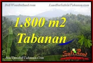 Beautiful PROPERTY 1,800 m2 LAND SALE IN Tabanan Selemadeg BALI TJTB379