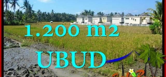 Exotic UBUD BALI 1,200 m2 LAND FOR SALE TJUB663