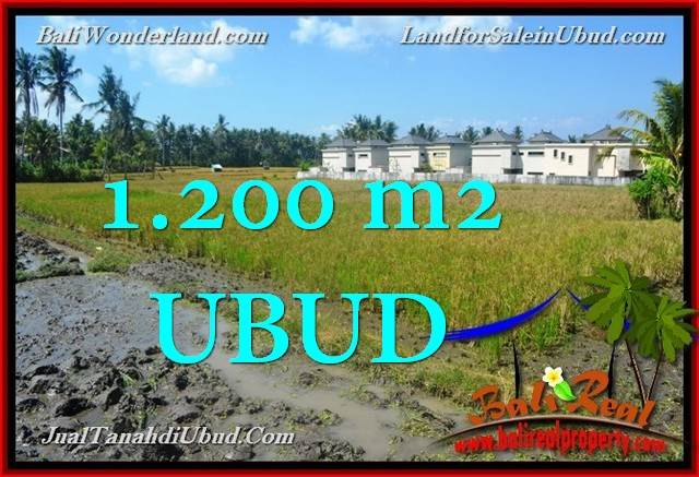 Exotic UBUD BALI 1,200 m2 LAND FOR SALE TJUB663