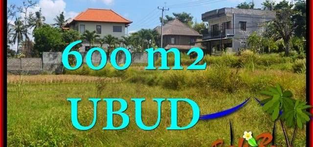 Beautiful PROPERTY 600 m2 LAND SALE IN UBUD TJUB664