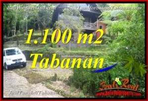 Affordable PROPERTY 1,100 m2 LAND SALE IN Tabanan Bedugul BALI TJTB371
