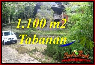 Beautiful PROPERTY 1,100 m2 LAND FOR SALE IN TABANAN BALI TJTB371