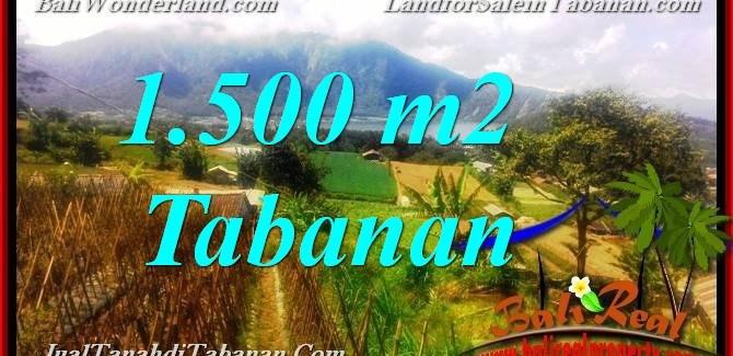 Affordable LAND SALE IN Tabanan Bedugul TJTB373