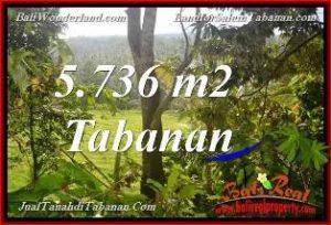 Affordable 5,736 m2 LAND IN TABANAN BALI FOR SALE TJTB376