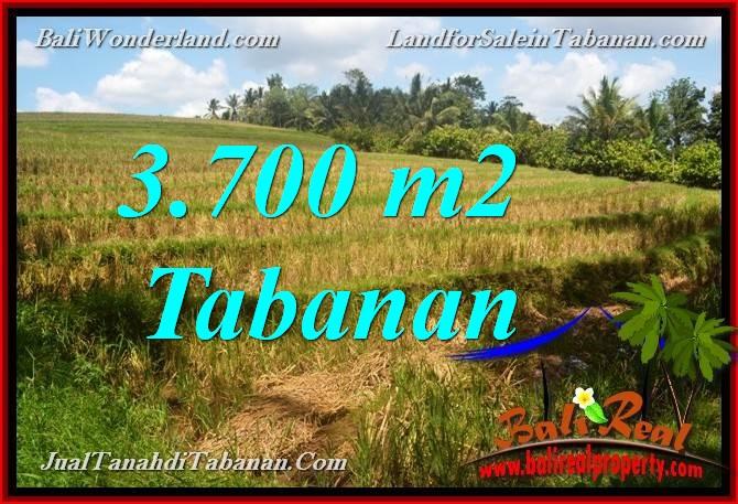 LAND IN TABANAN FOR SALE TJTB377