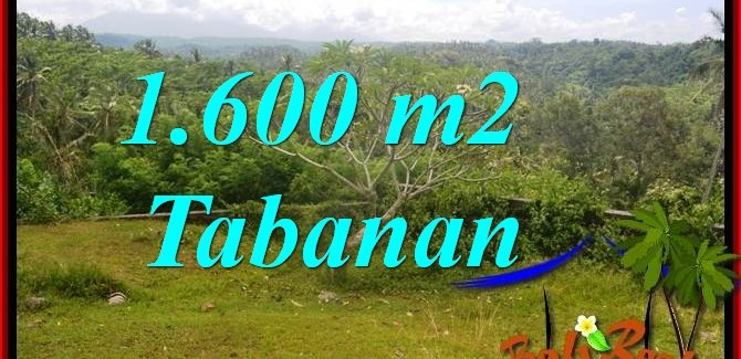 Beautiful 1,600 m2 LAND IN Tabanan Selemadeg FOR SALE TJTB378