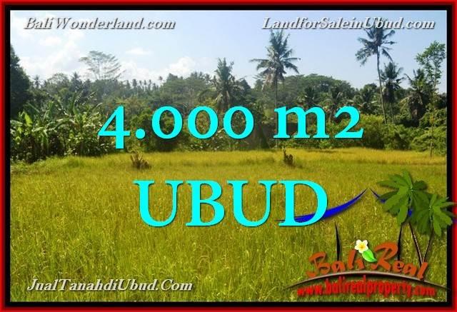 4,000 m2 LAND FOR SALE IN UBUD BALI TJUB661