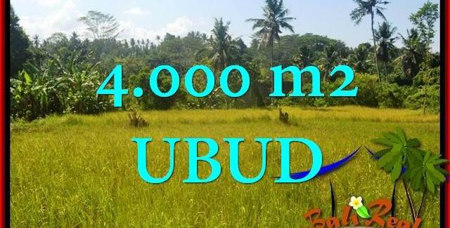 4,000 m2 LAND FOR SALE IN UBUD BALI TJUB661