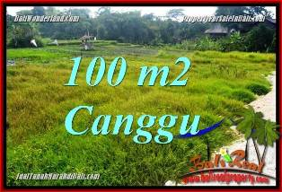 Magnificent PROPERTY 100 m2 LAND FOR SALE IN CANGGU BALI TJCG227