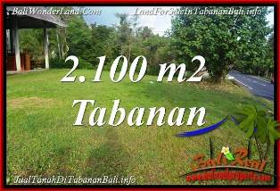 Beautiful PROPERTY LAND IN TABANAN SELEMADEG BALI FOR SALE TJTB393