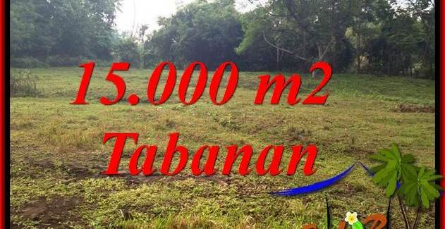 Magnificent PROPERTY 15,000 m2 LAND FOR SALE IN TABANAN KOTA BALI TJTB381