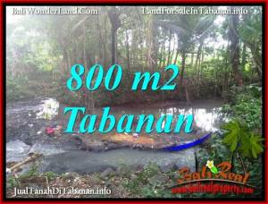 Magnificent TABANAN SELEMADEG BALI 800 m2 LAND FOR SALE TJTB384