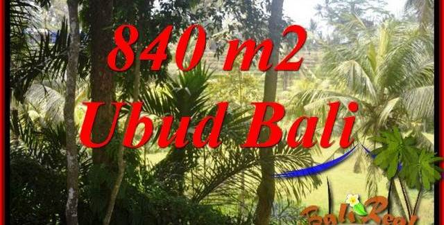 Beautiful 840 m2 Land sale in Lod Tunduh Bali TJUB685