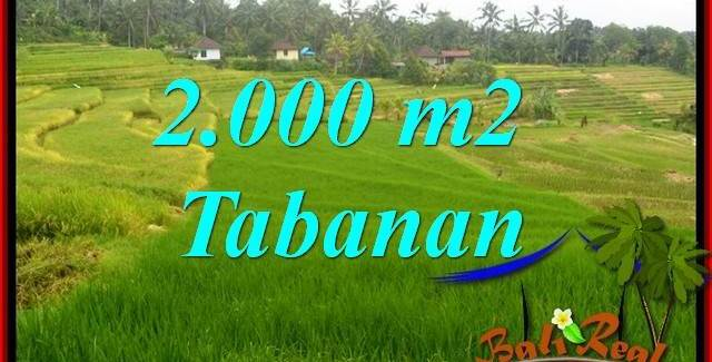FOR sale Magnificent Property 2,000 m2 Land in Tabanan Selemadeg TJTB396